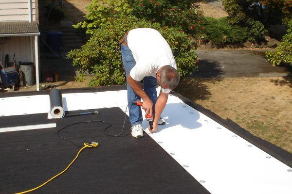 Flat Roof in Sammamish