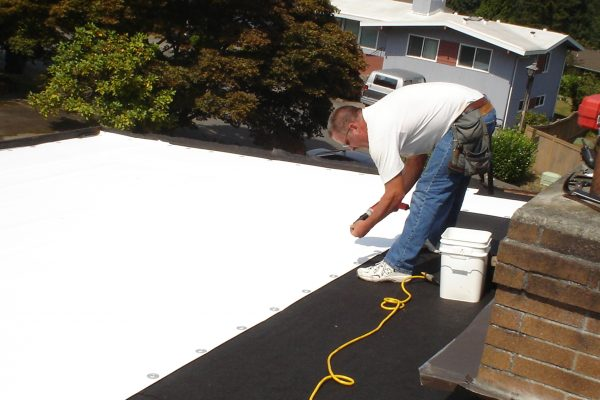Flat Roof in Bellevue