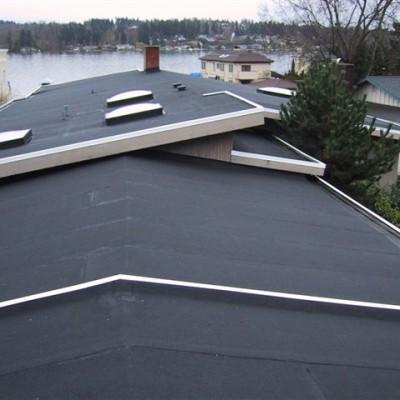 Roofing Specialists in Bellevue